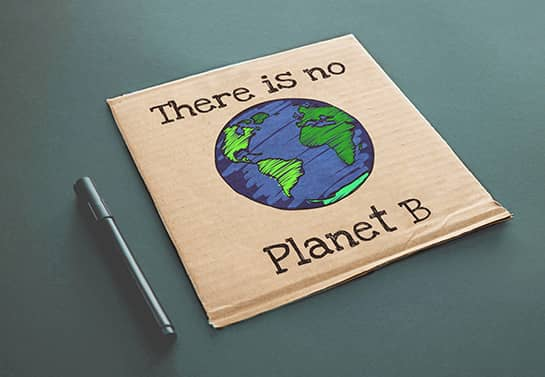 DIY protest sign idea with the earth drawing