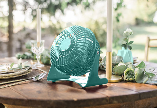 Mint fan for outdoor party