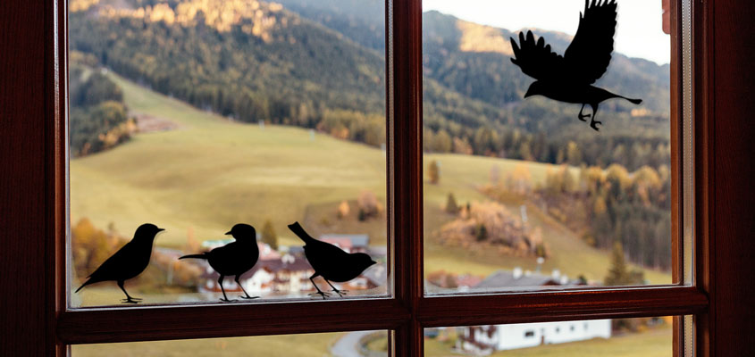 cute black birds decals for home window decorating