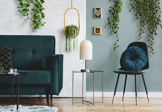 hanging plants living room wall decor idea