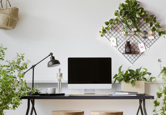 home office grid wall hanging plants