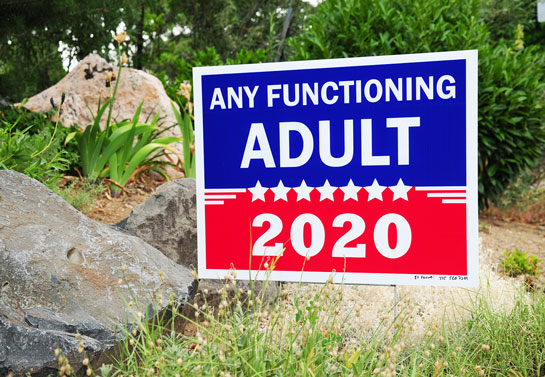 Any Functioning Adult funny political sign example