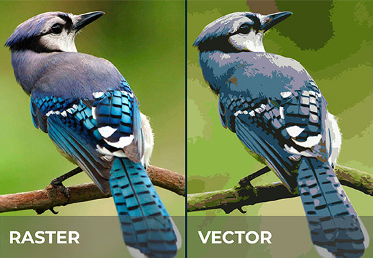raster vs vector photos as best format for printing photos