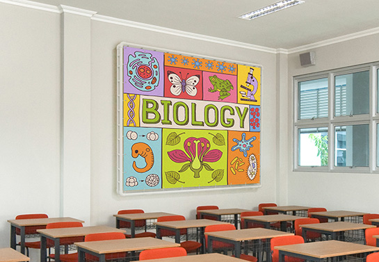 thematic classroom banner idea for biology class