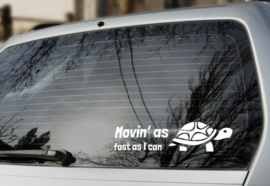 humorous turtle rear window decal idea