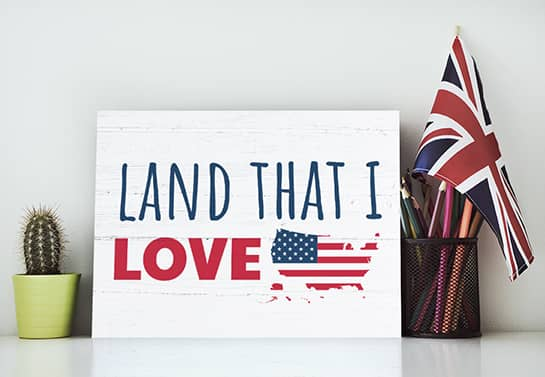 patriotic home decor in white displaying the words Land That I Love