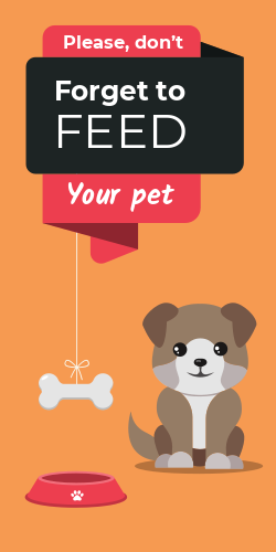 Please do not Forget to FEED Your Pet | Dog sign