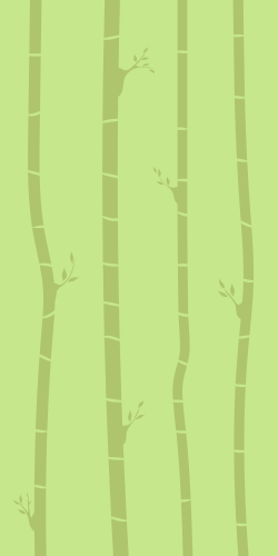 Long bamboo trees in forest on a light green background
