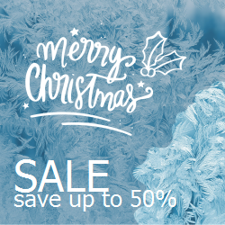 Christmas Thematic Sale Template